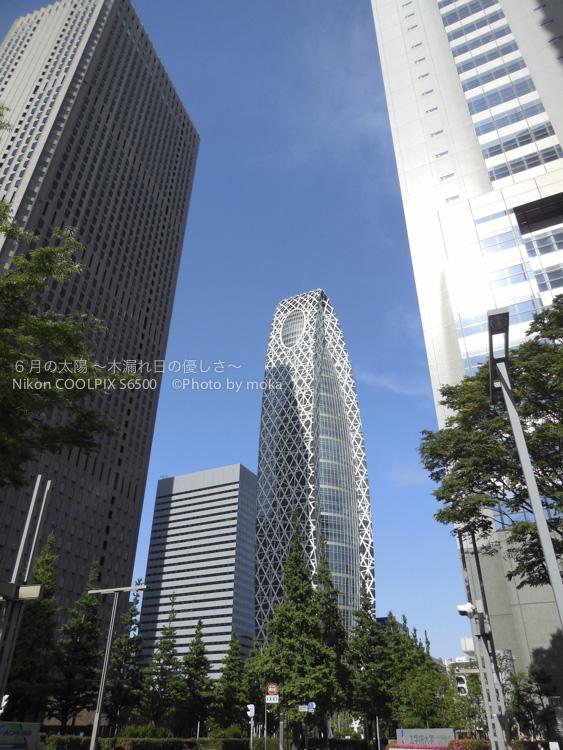 20130531_shinjuku21.jpg