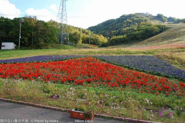 2008-0929-30_otaru27.jpg