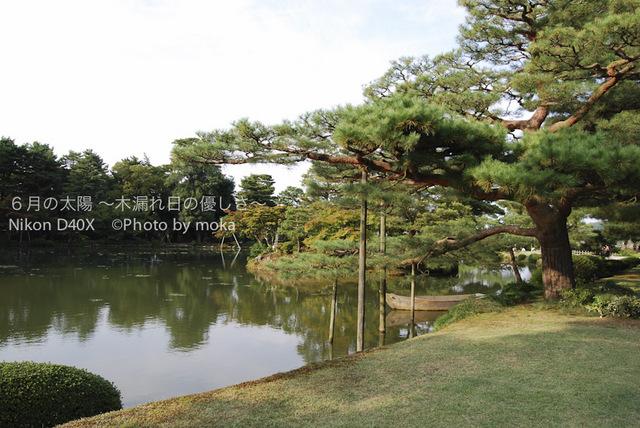 20081009_kanazawa07.jpg