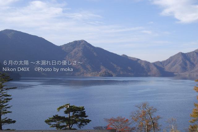 20081102_nikkou16.jpg