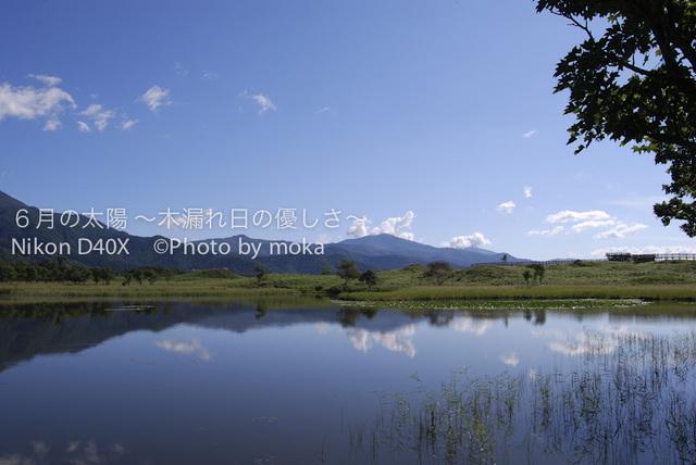 20100912-15_shiretoko63.jpg