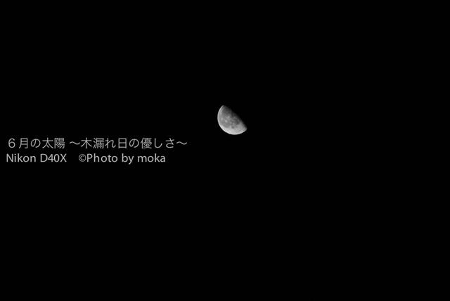 20100929_jitaku03.jpg