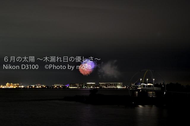 20101003_yakei02.jpg