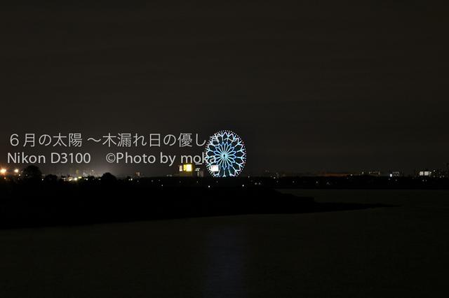 20101003_yakei03.jpg