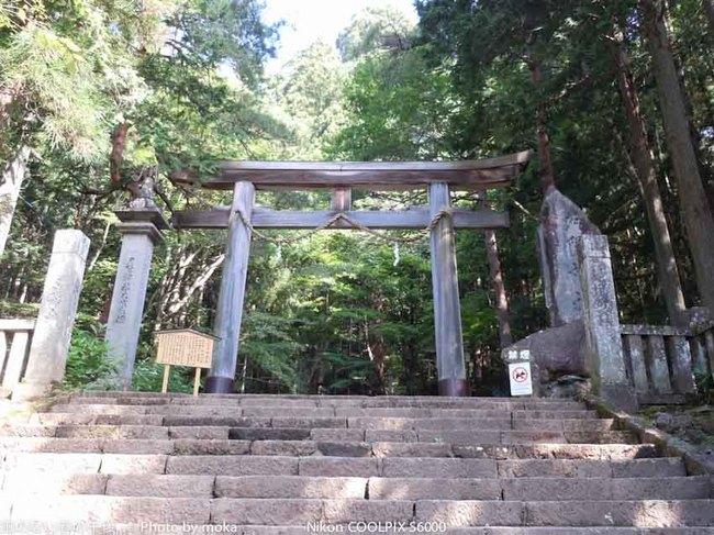 20110829-31_togakushi-adumino246.jpg