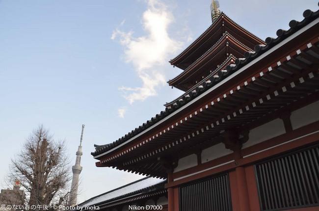 20120128_asakusa35.jpg