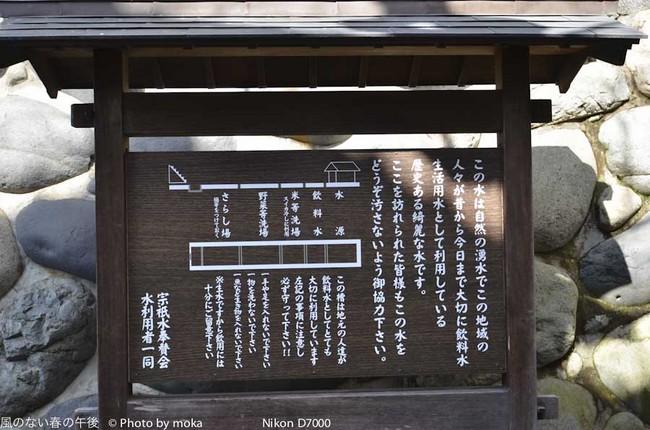 20120218_gujohachiman20.jpg