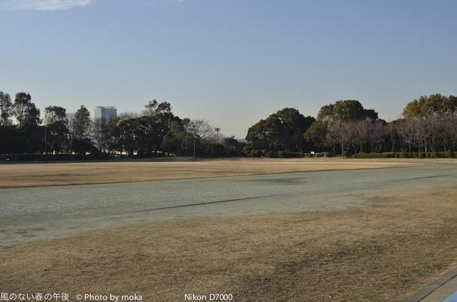 20120221_yumenoshima01.jpg