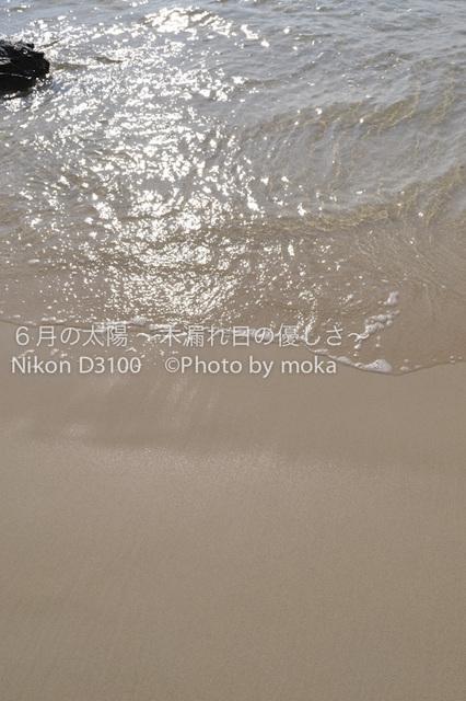 20120317-24_puket-pipi591.jpg