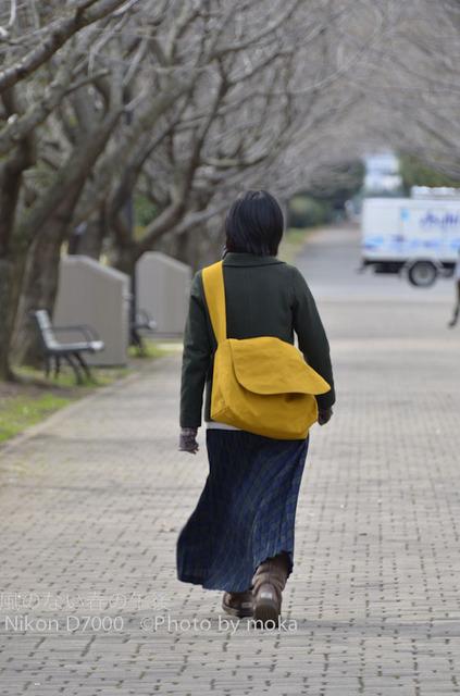 20120326_kasairinkai-park52.jpg