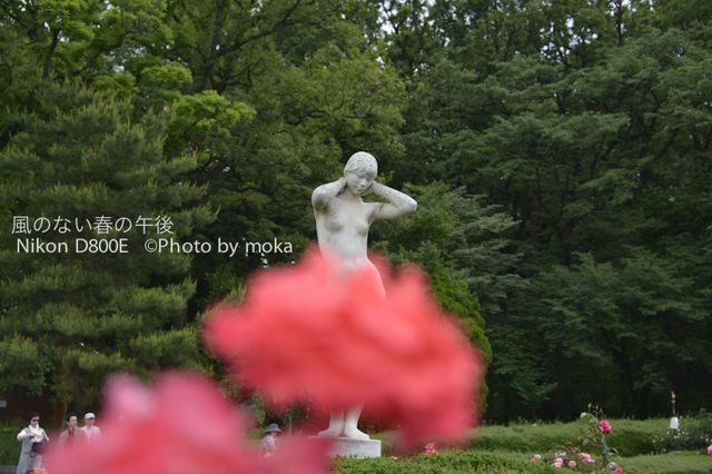 20120530_jindaiji005.jpg