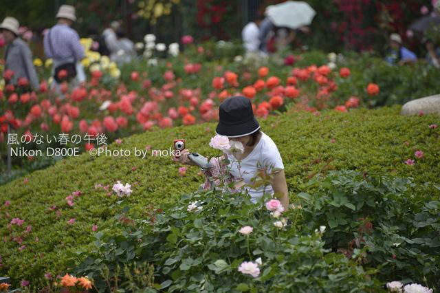 20120530_jindaiji041.jpg