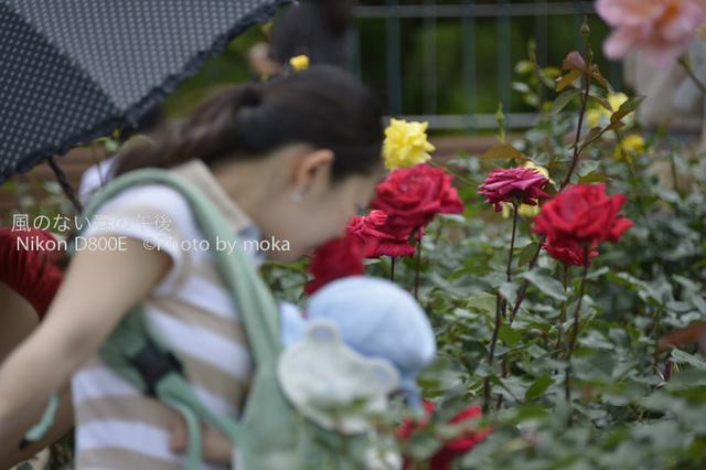 20120530_jindaiji046.jpg