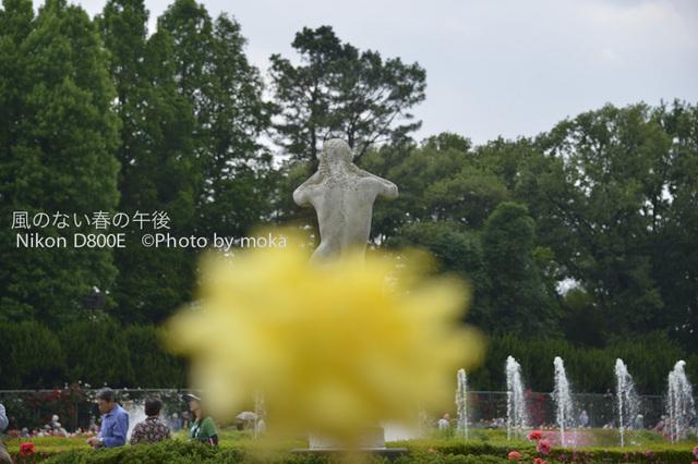 20120530_jindaiji054.jpg