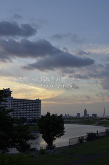 20120802_oujikamiya03.jpg