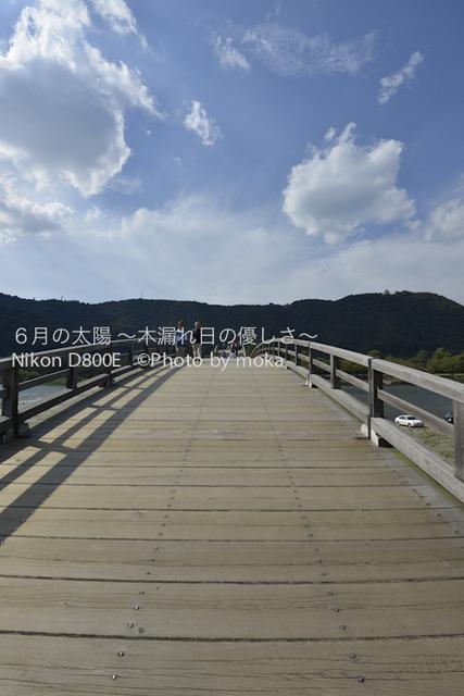 20120918_iwakuni10.jpg