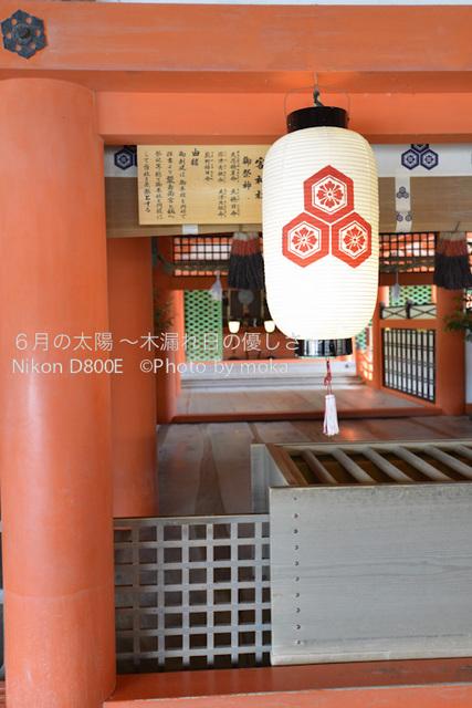 20120918_miyajima11.jpg