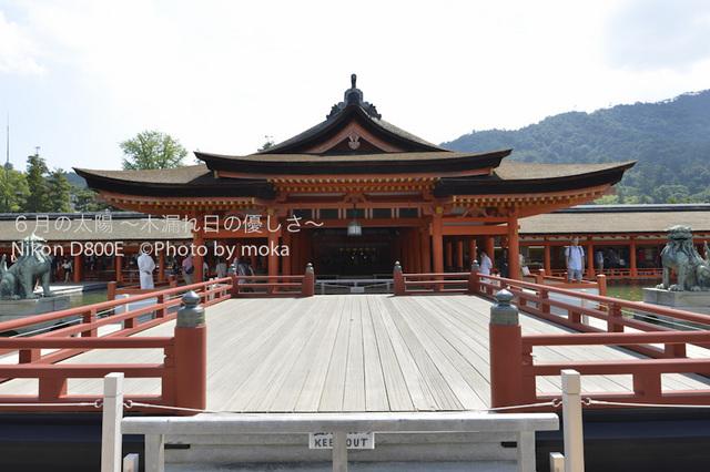 20120918_miyajima27.jpg