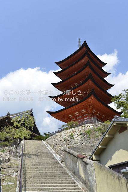 20120918_miyajima42.jpg