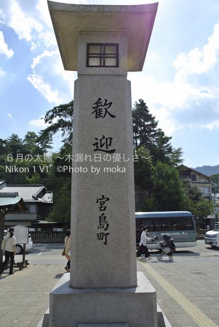 20120918_miyajima59.jpg