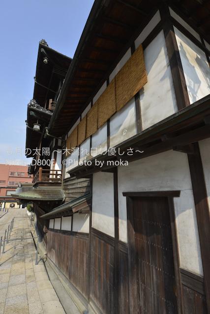 20120920-21_dogo06.jpg