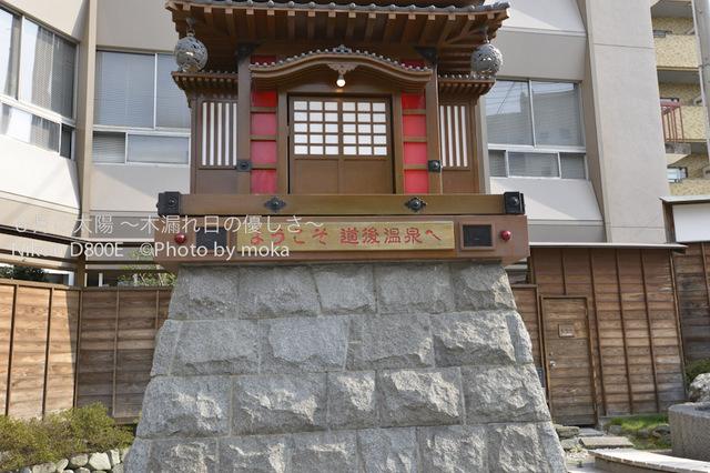 20120920-21_dogo23.jpg