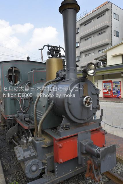 20120920-21_dogo37.jpg