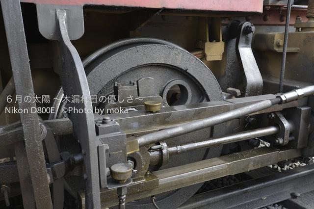 20120920-21_dogo38.jpg