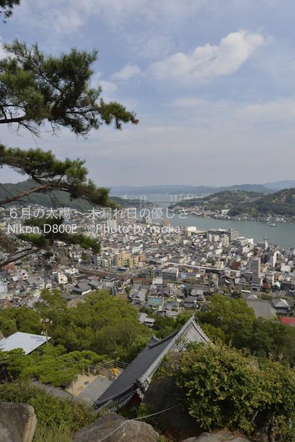 20120920_onomichi21.jpg