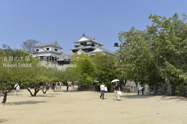 20120921_matuyama06.jpg