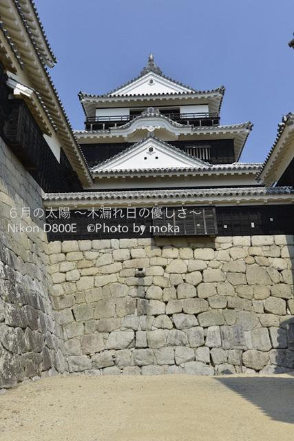 20120921_matuyama13.jpg