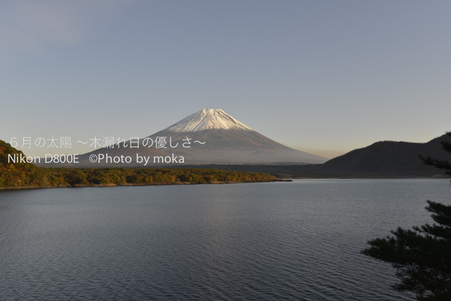 20121108_Mt.Fuji49.jpg