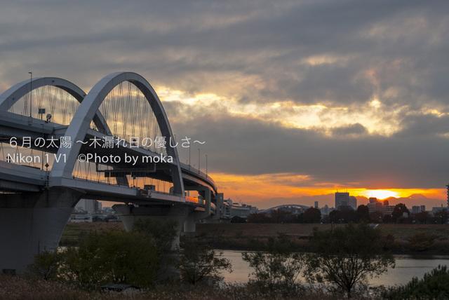 20121128_kouhokuJCT29.jpg