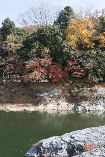 20121202_nagatoro08.jpg