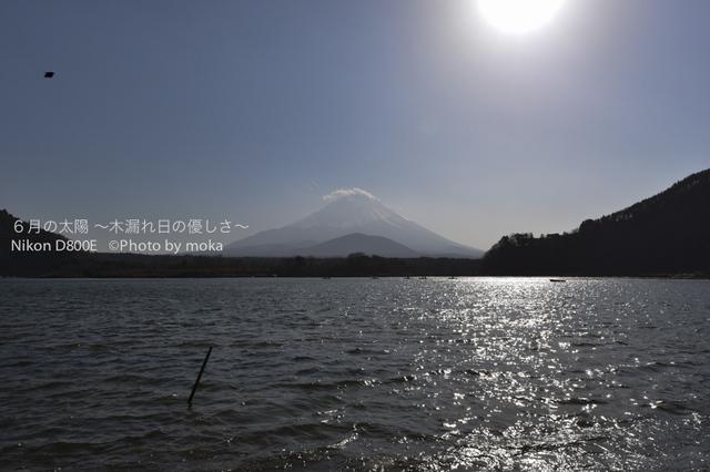 20130102_Mt.Fuji34.jpg