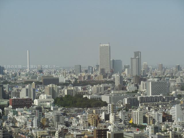 20130531_shinjuku15.jpg