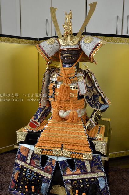 20140526_taiyo50.jpg