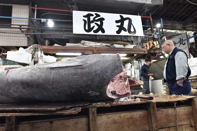 20161021_tsukiji197.jpg