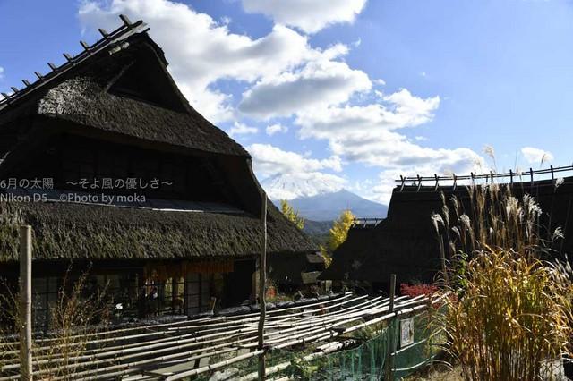 20161112_Mt.Fuji100.jpg