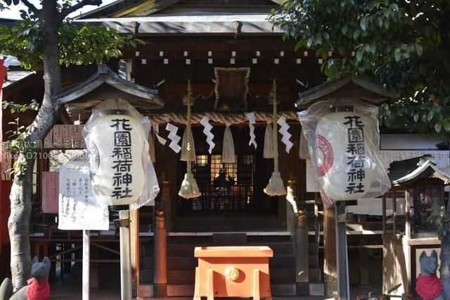 20170125_ueno29.jpg