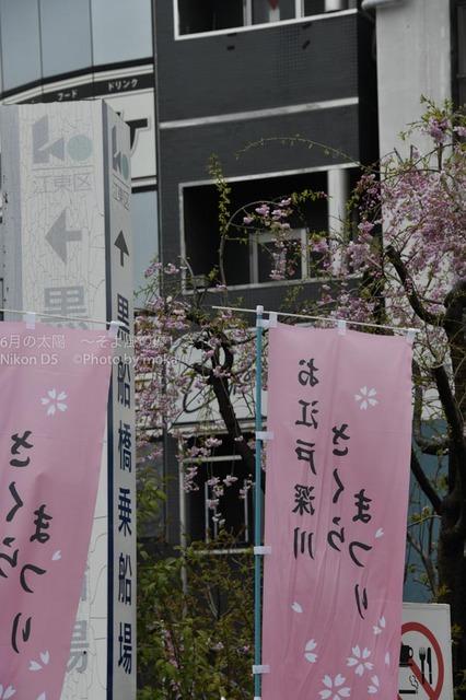 20170408_fukagawa061.jpg