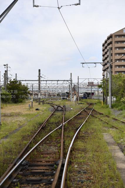 20170504_choshi89.jpg