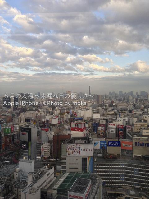 iPhone5_20121204.jpg