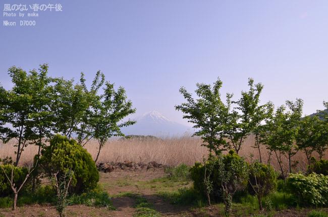 20110521_fujisan44.jpg