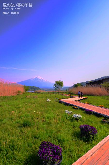 20110521_fujisan45_ー2_ー3_to.jpg