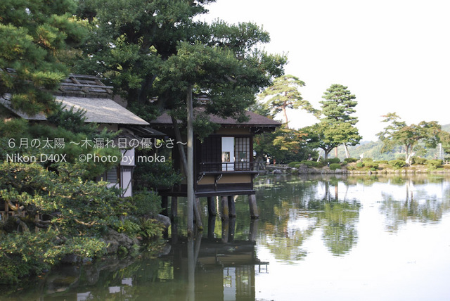 20081009_kanazawa05.jpg