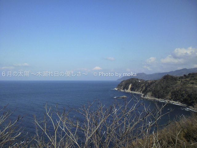 20100219-0220_nishiizu15.jpg