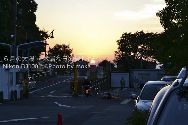 20101002_mizumoto-park17.jpg