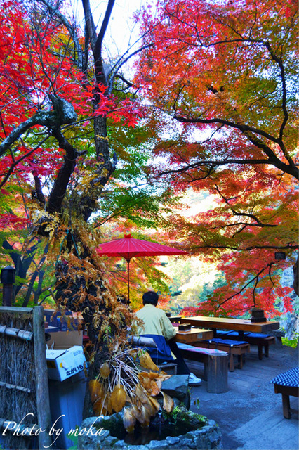 20101121_shosenkyo42_-1_-2_.jpg