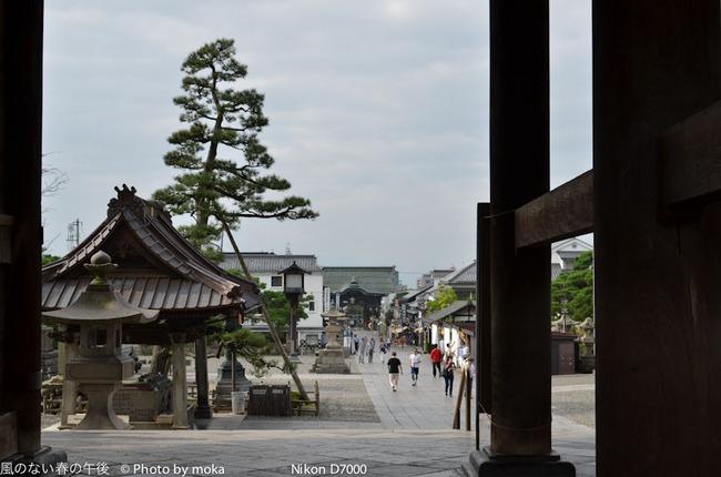 20110829-31_togakushi-adumino011.jpg